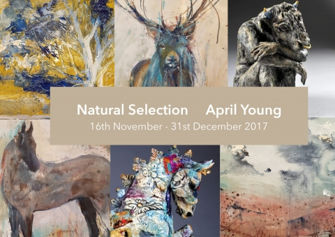 April Young's Exhibition in Sadler Gate