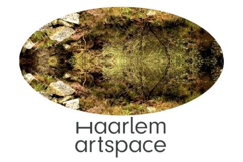 Haarlem Artspace: The Entanglement